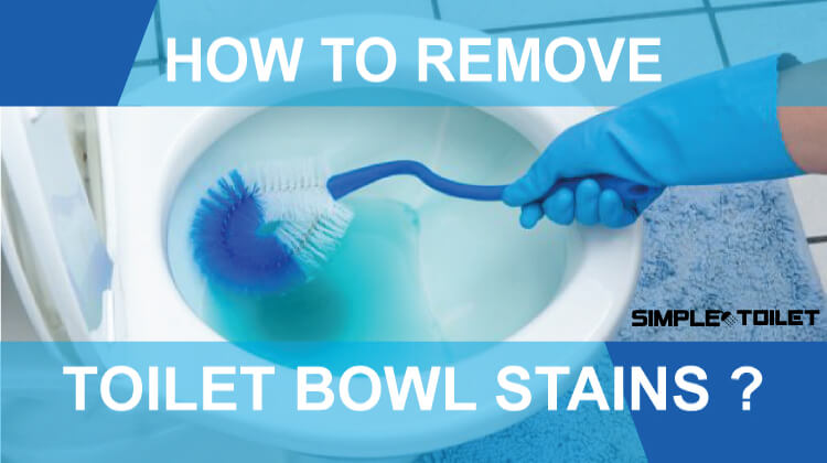 How to Remove Toilet Bowl Stains?