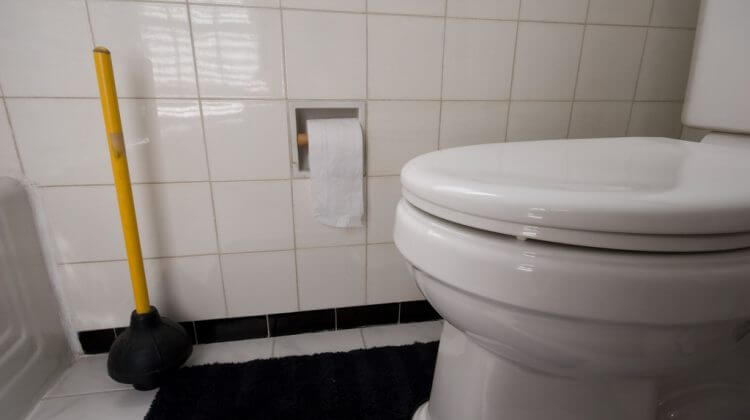 Clean Toilet with Plunger, Paper, Closed Potty after Toilet Unclogging
