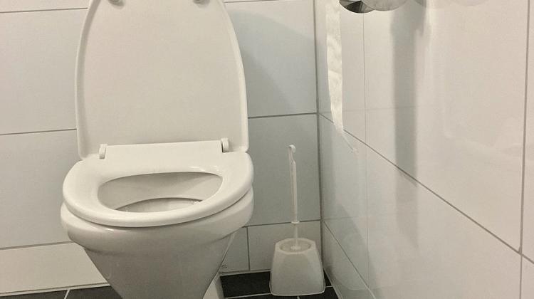 who invented the toilet- Toilet, toilet paper, toilet brush