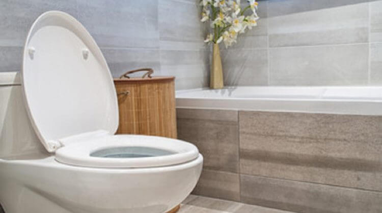 modern bathroom in luxury house with one piece vs two piece toilet