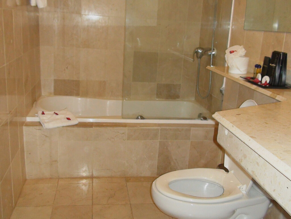Clean bathroom and toilet inside a residence with to show the Benefits of Indoor Plumbing on Toilet Facts