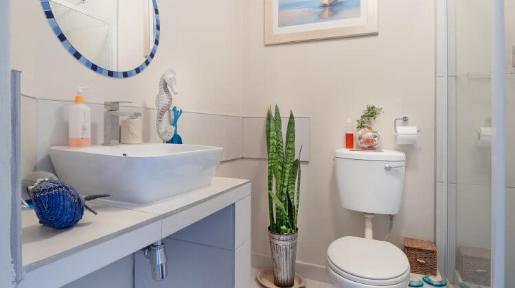 Bathroom white ceramic toilet bowl beside glass wall and mirror, lavatory also toiletries