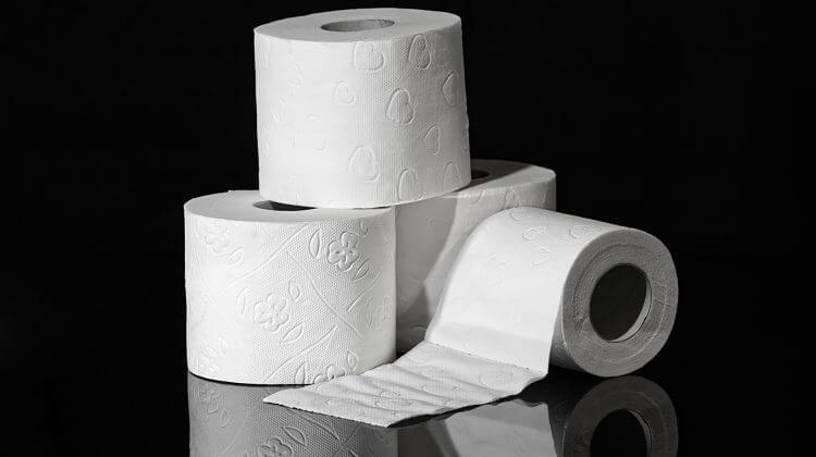 4 rolls of toilet paper