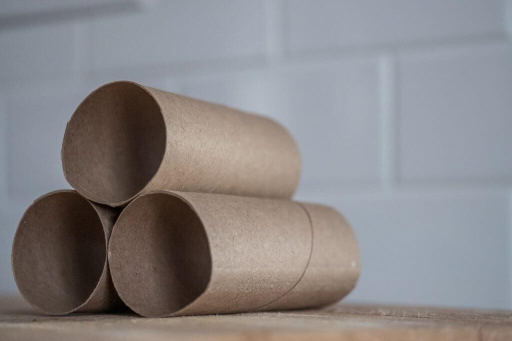 Empty toilet paper/loo rolls